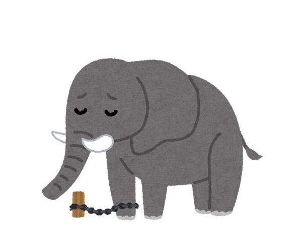鎖で繋がれたサーカスの象。思い込みは思考の自由を奪う